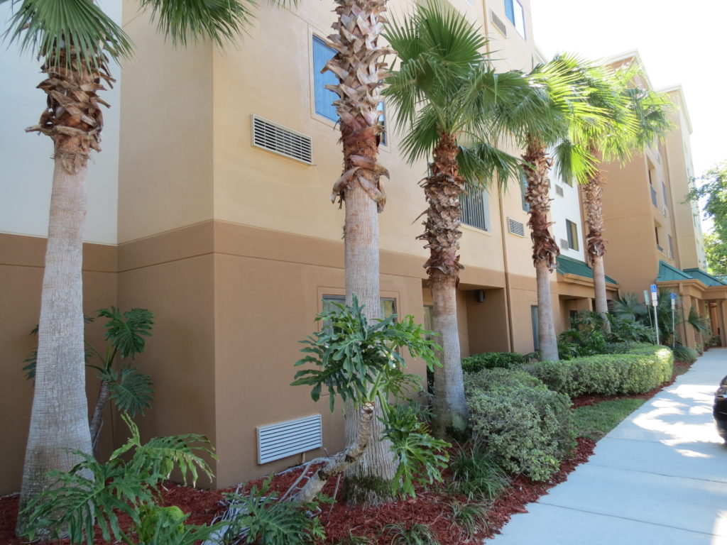 Courtyard by Marriott Orlando Maitland